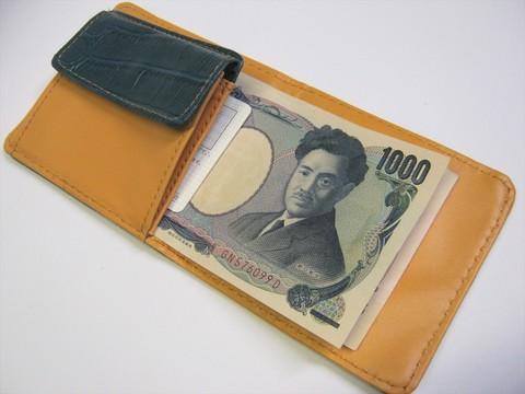 2014-08-03_Compact_Wallet_20.JPG