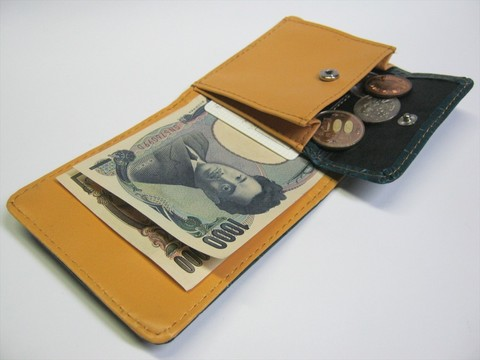 2014-08-03_Compact_Wallet_24.JPG