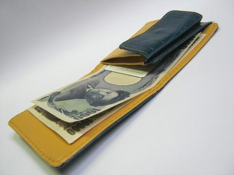 2014-08-03_Compact_Wallet_25.JPG
