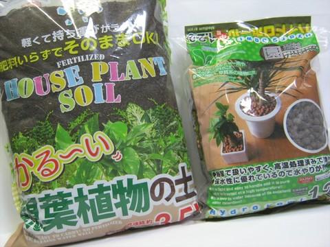 2014-10-11_Gardening_01.JPG