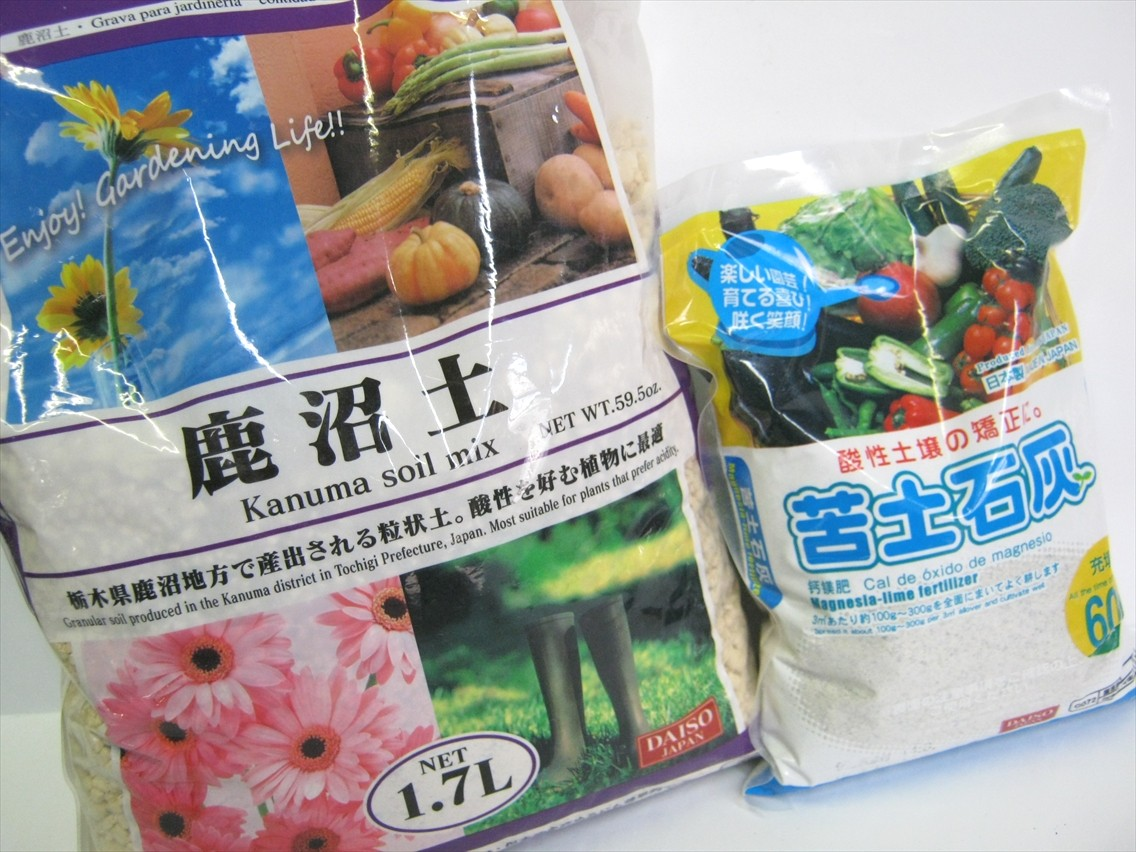 2014 10 18 gardening 01