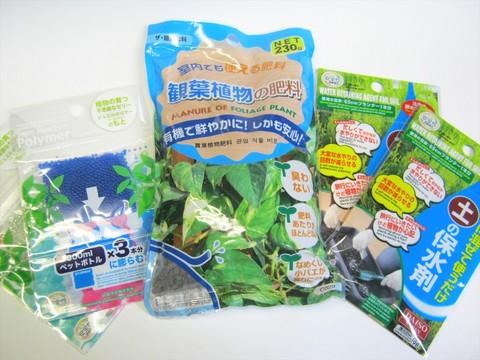 2014-12-18_gardening_01.JPG