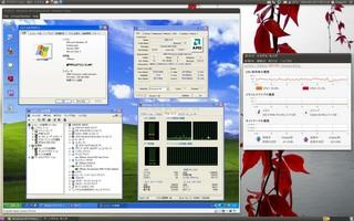 2010-10-24_Ubuntu_VMware_WinXP.jpg