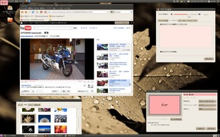 20100919_9600GT_Ubuntu.jpg