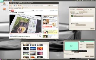 20100919_HD4350_Ubuntu.jpg