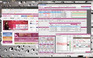 2011-03-18_Ubuntu_外為オンライン_03.png