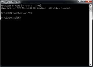 2011-04-05_ML110G5_W7_06_コマンド_slmgr_dli.png