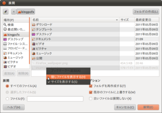 2011-05-27_Bz_install_04.png