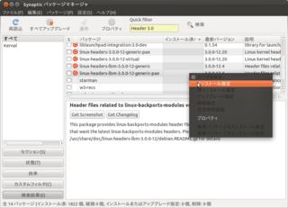 2011-10-16_Ubuntu1110_VmwarePlayer_02.png