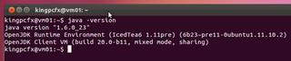 2012-03-30_Ubuntu_hatchukunFX_01.png