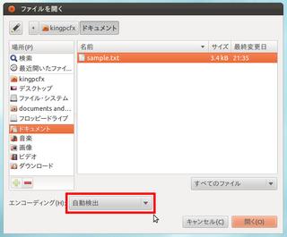 2012-04-07_Ubuntu_text_05.png