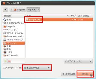 2012-04-07_Ubuntu_text_10.png