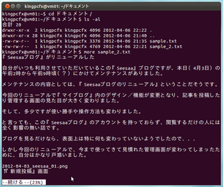 2012-04-07_Ubuntu_text_18.png
