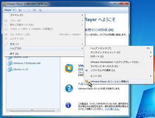 2012-08-24_VMwarePlayer_22.png