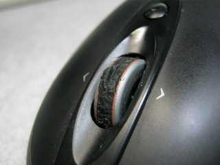 2012-10-15_mouse_06.JPG