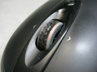 2012-10-15_mouse_07.JPG
