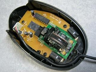 2012-10-15_mouse_20.JPG