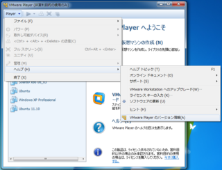 2012-11-11_VMwarePlayer_18.png