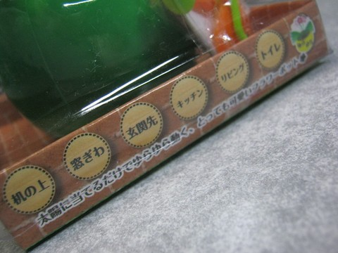 2012-12-17_YuRax2_Flower_05.JPG