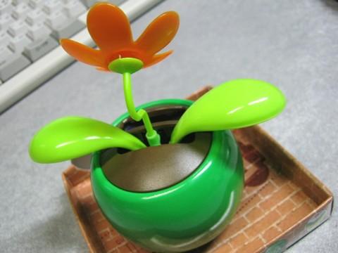 2012-12-17_YuRax2_Flower_19.JPG