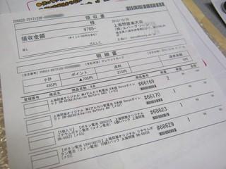 2012-12-30_Donya_Battery_03.JPG