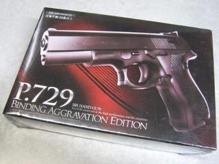 2013-02-02_BB_HAND_GUN_P729_02.JPG