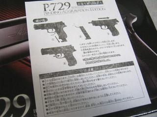 2013-02-02_BB_HAND_GUN_P729_11.JPG