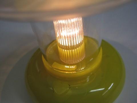 2013-06-28_Lantern_Light_SMALL_30.JPG
