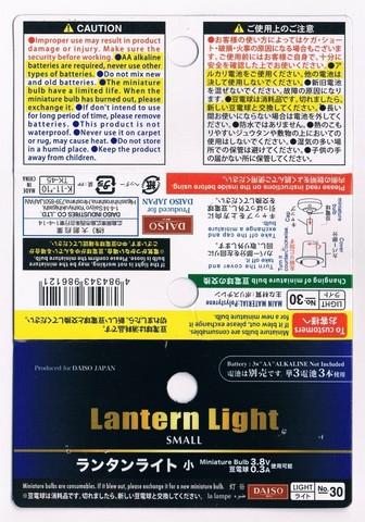 2013-06-28_Lantern_Light_SMALL_36.JPG