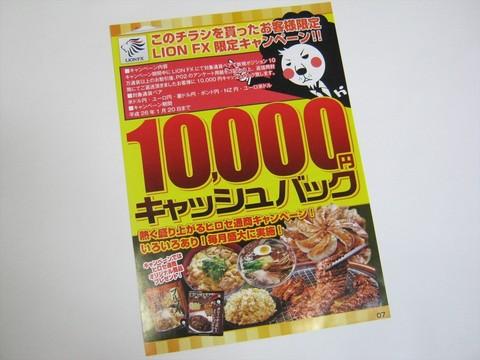 2014-01-09_LIONFX_DM_10.JPG