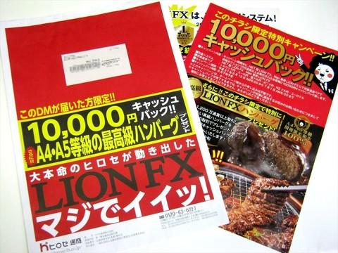 2014-06-21_LIONFX_DM_01.JPG