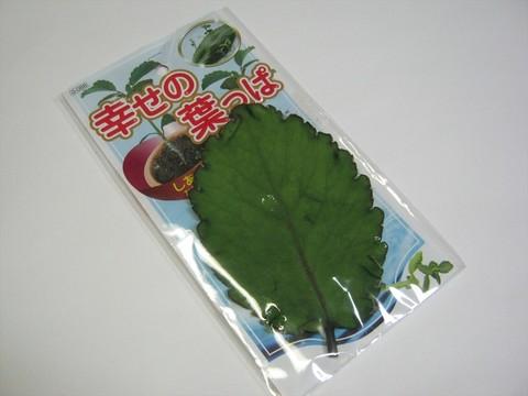 2014-07-31_leaf_04.JPG