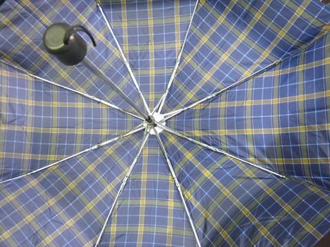 2014-08-06_Collapsible_Umbrella_17.JPG