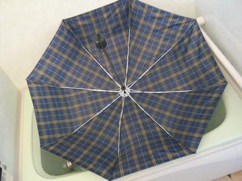 2014-08-06_Collapsible_Umbrella_25.JPG