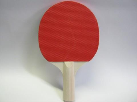 2014-08-12_Table_Tennis_Racket_16.JPG