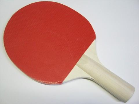 2014-08-12_Table_Tennis_Racket_18.JPG
