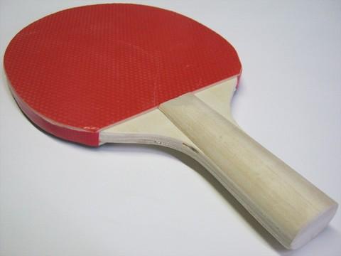 2014-08-12_Table_Tennis_Racket_19.JPG