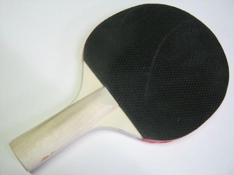 2014-08-12_Table_Tennis_Racket_27.JPG