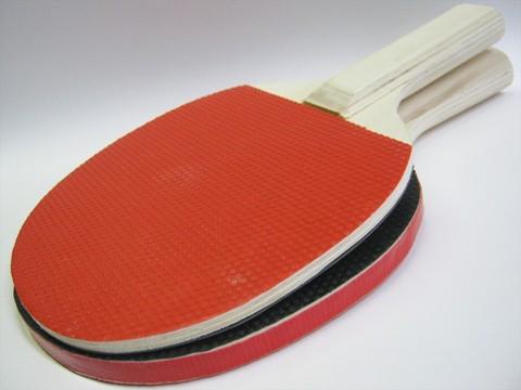2014-08-12_Table_Tennis_Racket_41.JPG