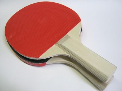 2014-08-12_Table_Tennis_Racket_43.JPG