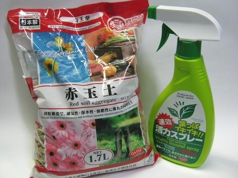 2014-08-16_Gardening_01.JPG