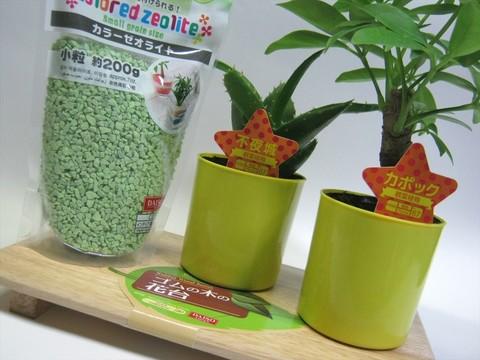 2014-09-20_Plants_03.JPG
