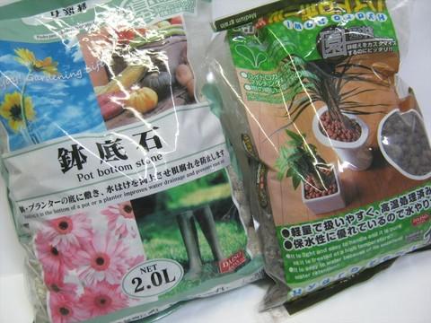 2014-11-03_tulip_02.JPG
