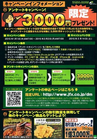 2015-01-03_JFX_05.jpg