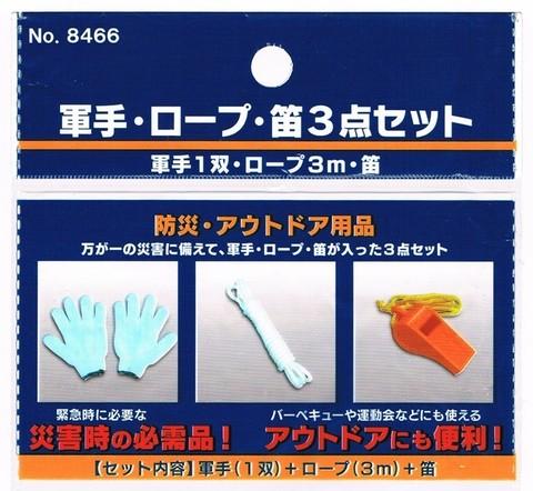 2015-03-08_Emergency_supplies_29.jpg