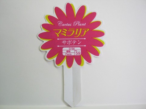 2015-04-02_Plants_17.JPG