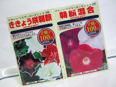 2015-05-06_Plants_02.JPG