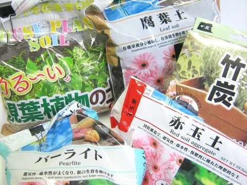 2015-05-06_Plants_45.JPG