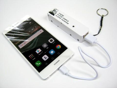 2016-11-11_Mobile_Battery_044.JPG